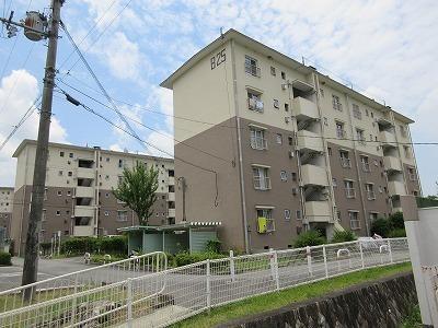 五社駅 3.1万円