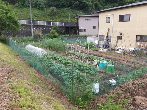 松田町寄 土地