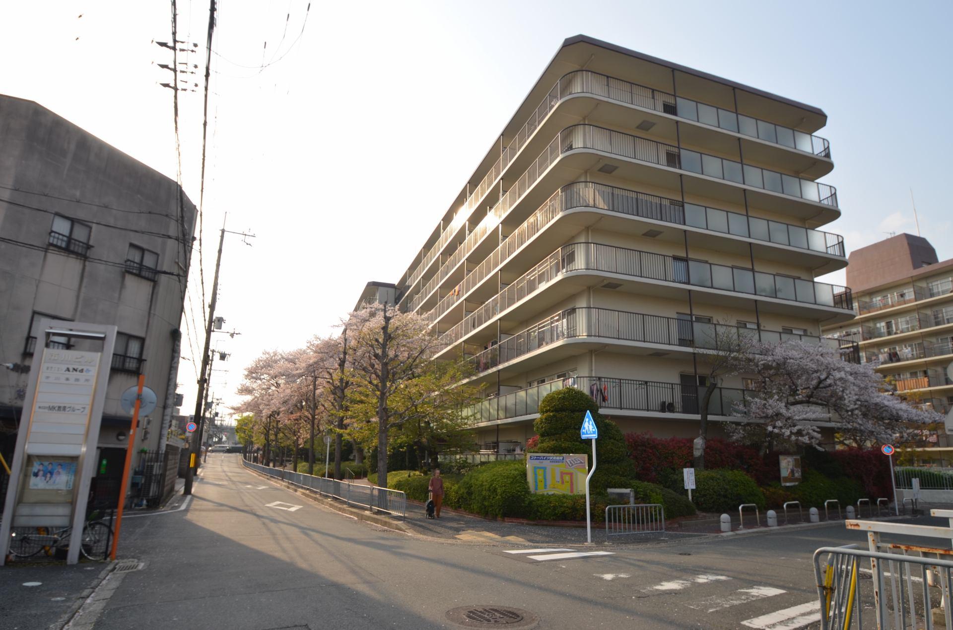 コトーハイツ伏見稲荷C棟 206